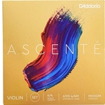Ascente Violin String Set - Synthetic Core